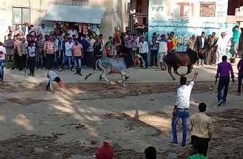 दिवाली के दूसरे दिन यहां मौत से खेलते हैं ग्रामीण