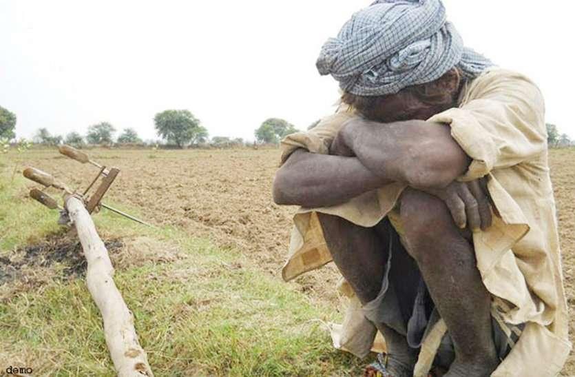 परेशान किसान: प्रदेश के इस जिले मेंढाई लाख किसानों ने कराया फसलों का पंजीयन, 2 लाख से अधिक निरस्त