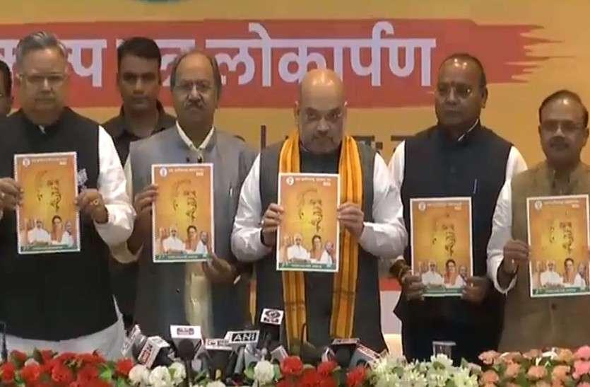 CG Election 2018: छत्तीसगढ़ के लिए भाजपा ने जारी किया घोषणा पत्र, ये हैं प्रमुख बातें