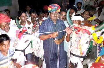 video: कृषि मंत्री प्रभुलाल सैनी ने बैलों का पूजन कर परम्परा का किया निर्वाहन