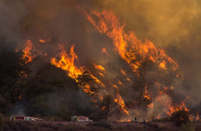 कैलिफोर्निया के जंगलों में लगी भीषण आग से 9 लोगों की मौत
