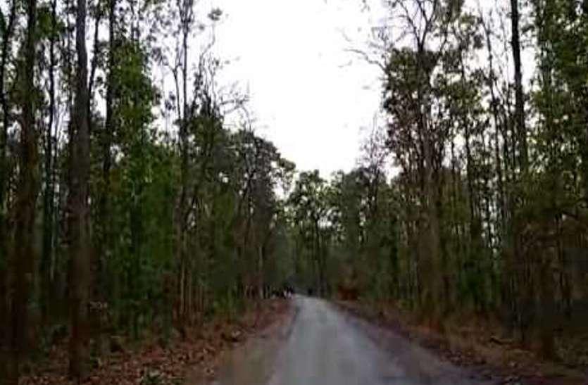 दोस्त के साथ जंगल में रुकी थी छात्रा, पहुंच गए 6 बाइक सवार फिर  फिर जमकर की मनमानी
