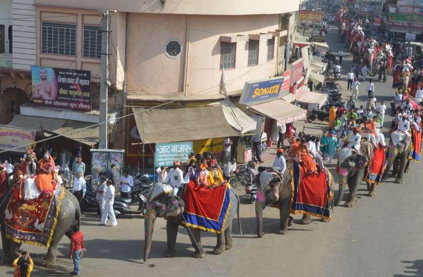 मीरा की निकली रजत रेवाड़ी शोभायात्रा