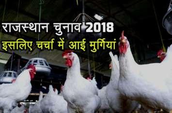 राजस्थान चुनाव में मुर्गियों के कारण वोट नहीं डालेंगे इस गांव के मतदाता