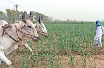 योगी राज में यहां चल रहा भ्रष्टाचार का बड़ा खेल, कृषि विभाग के अफसर खा रहे हैं किसानों की सब्सिडी