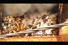 सेवई गोदाम में भीषण आग से कॉलोनी में हड़कंप, आग से तकरीबन 2 लाख का नुकसान