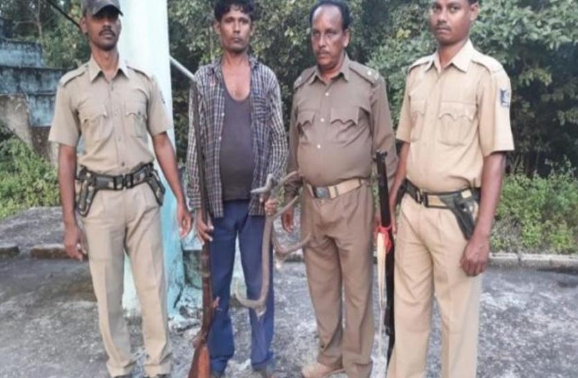 चार हाथियों को मारने वाला शिकारी गिरफ्तार, पुलिस की ओर से पूछताछ जारी