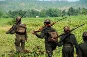 बिग ब्रेकिंग : बीजापुर के मुर्दोंडा में पुलिस नक्सली मुठभेड़, कोई हताहत नहीं