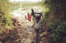 विधानसभा चुनाव: 2018 आदिम युग की तरह नाला-झिरिया के पानी से प्यास बुझा रहे हमारे आदिवासी