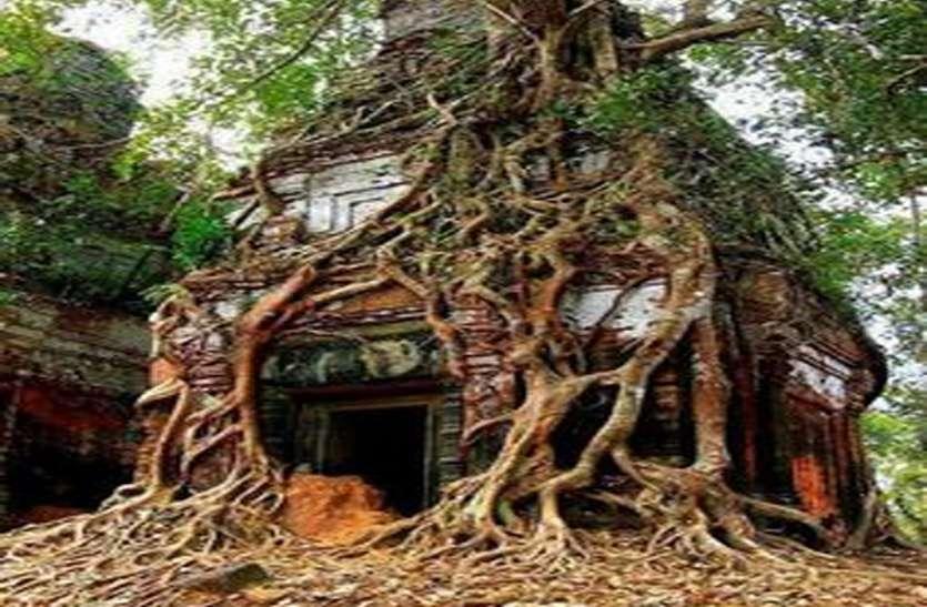 पेड़ के तने में स्थापित 300 साल पुराना अनोखा शिव मंदिर, इसे देख वैज्ञानिक भी हैं हैरान