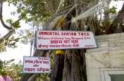 प्रयागराज कुंभ 2019: संगम किनारे अकबर के किले में स्थापित होगी मां सरस्वती की प्रतिमा