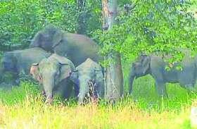 अनाउंसमेंट और सायरन से करेंगे ग्रामीणों को अलर्ट, बताएंगे हाथियों का लोकेशन