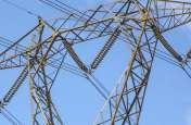 11 हजार की लाइन पर काम करने चढ़ा था कर्मचारी, तभी आ गई बिजली, फिर दिखा ऐसा खौफनाक नजारा