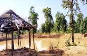 राजिम विधायक भूल गए अपने गोद लिए गांव को, बांट जोहती रही जनता पूरे पांच साल