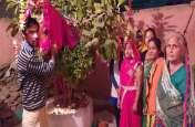 तुलसी विवाह में उमड़ी श्रद्धा