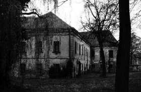 सूनसान इलाके में बने इस घर में रहने चली गई महिला, हुई ऐसी अजीबोगरीब घटनाएं कि उड़ गए होश