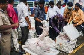 चेन्नई: स्टेशन पर मिला डॉग्स का 1100 किलो मांस, खाने के लिए होटलों में होनी थी सप्लाई