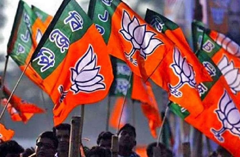 mp election 2018 : भाजपा प्रत्याशी इस तरह कर रहे प्रचार, यह है उनकी दिनचर्या