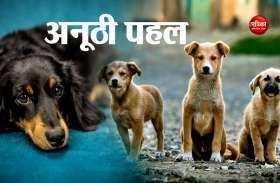 अब कुत्तों का भी होगा रीति रिवाजों के साथ अंतिम संस्कार, इस जगह बन रहा है शवदाह गृह