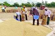 समर्थन मूल्य में धान बेचने के लिए 30 फीसदी किसानों को नहीं मिला टोकन, काट रहे चक्कर