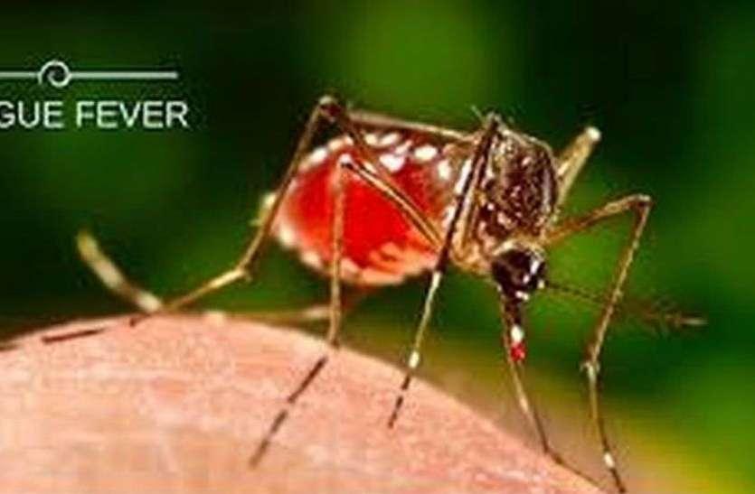 पिछले साल से चार गुना फैला डेंगू, दो साल में पहली मौत