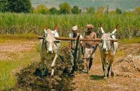 भारत की पहली कृषि निर्यात नीति को मंत्रिमंडल की मंजूरी, किसानों की आय दोगुनी करने का दावा