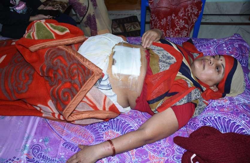 गोधे के हमले में महिला घायल