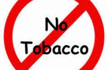 स्टेच्यू ऑफ यूनिटी परिसर में लग सकता है प्लास्टिक एवं तंबाकू पर प्रतिबंध