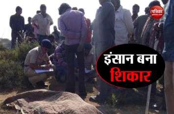 गुजरात: भावनगर में इंसान को खा गया शेर, क्षत विक्षत शव बरामद