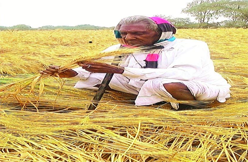 जिले में किसानों के फेर में सरकार को 995 करोड़ का फटका