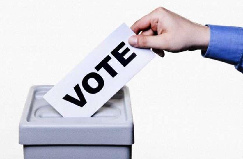 बार चुनाव की सरगर्मी में प्रत्याशियों के छूट रहे पसीने