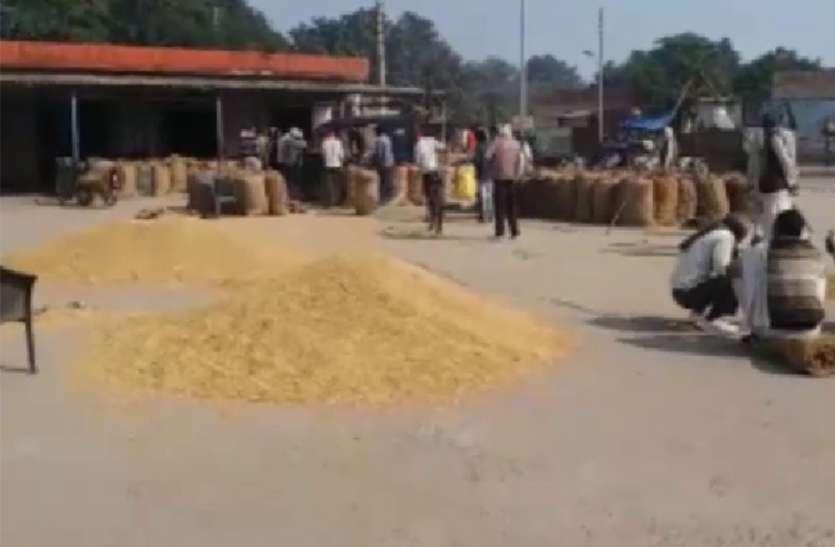 एक्सक्लूसिव : औने-पौने दामों में धान बेच रहे किसान, बाधा बन रही यह सरकारी प्रक्रिया
