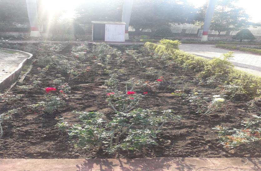 फूलों की 400 प्रजातियों के साथ फिर नंबर-1 का दावा