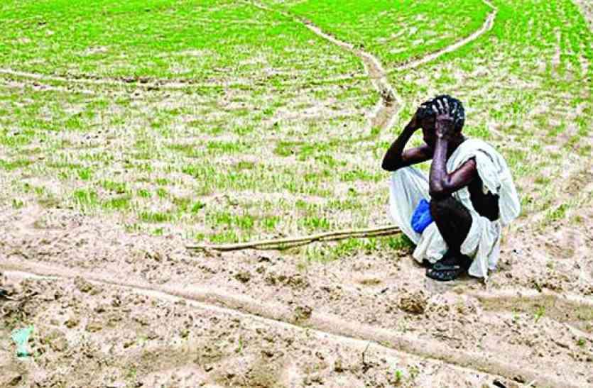 VIDEO : कर्ज माफी ही काफी नहीं, बोले किसान, इन समस्याओं पर कब होगी बात, देखें वीडियो...