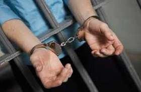 लाखों रुपये मूल्य की कत्थे की लकड़ी जब्त, एक तस्कर गिरफ़्तार