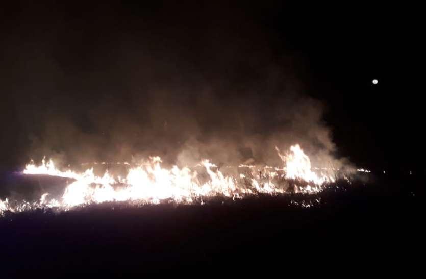 गन्ना कटने के बाद किसान खेत में जला रहे नरवाई