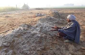 रात्रि का तापमान गिरने से खेतों में जमने लगा पाळा