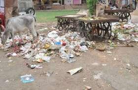 VIDEO: 'नींद में निगम'! अगले महीने स्वच्छता सर्वेक्षण, सड़कों पर लगे कचरे के ढेर