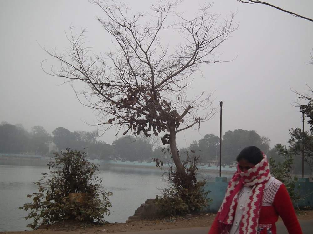 शीत लहर से कांपा जिला, खजुराहो में पारा 1.4 डिग्री पर आया