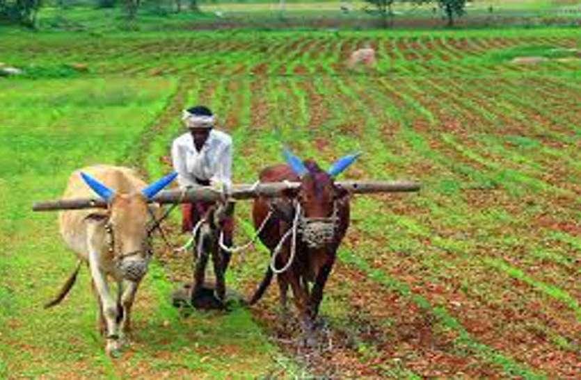 किसान कर्ज माफी का टारगेट पूरा करने में कृषि विभाग का छूटा पसीना