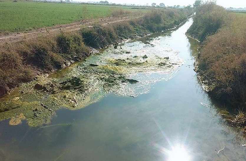 टेल क्षेत्र में नहीं पहुंच रहा पानी
