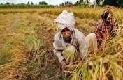 किसान कर्ज माफी की उलझन को सुलझाएंगे सात मंत्री और छह अधिकारी