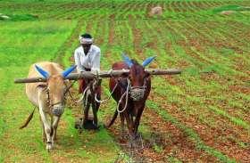 कर्ज माफ करके नहीं बल्कि ऐसे किसानों की समस्या दूर करेगी सरकार, इनकम ट्रांसफर स्कीम की होगी शुरुआत