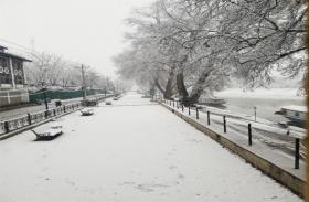 jammu-kahsmir photos:बर्फबारी देख डगमगाया सैलानियों का मन,घूमने आए थे अब जता रहे यहीं रूकने की इच्छा