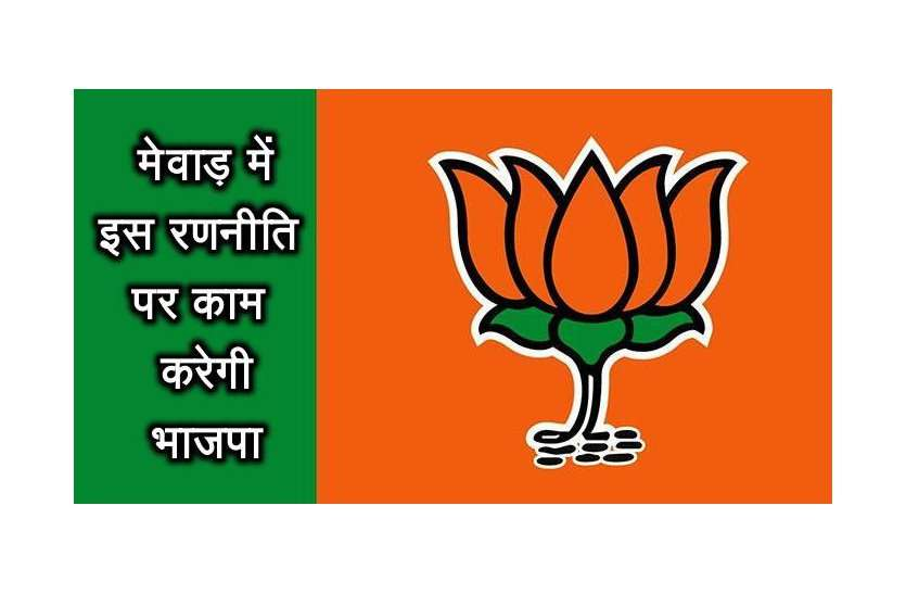 मेवाड़ में जीत के लिए भाजपा ने बनाई यह बड़ी रणनीति, अब कार्यकर्ता करेंगे कुछ ऐसा...