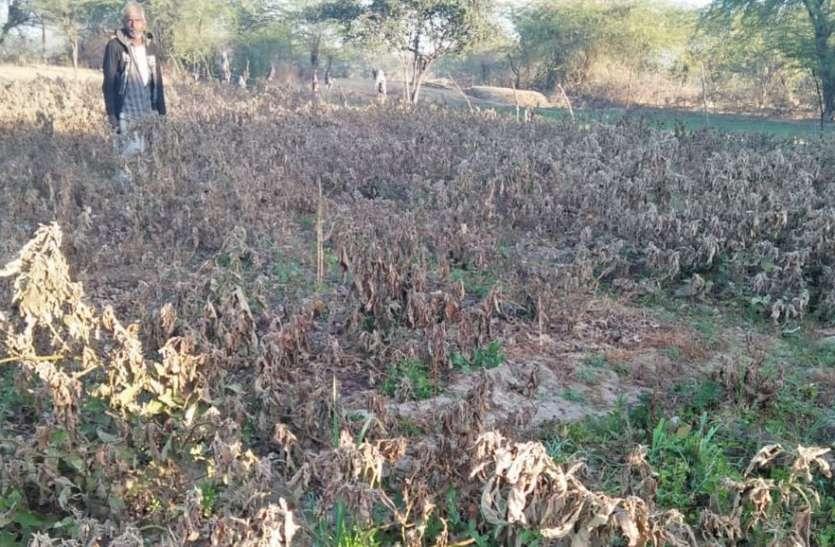 कैसे हो किसानों का कल्याण, योजनाएं बताने वाले ही नहीं