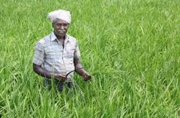 उम्रदराज किसानों के लिए शुरू हुई पेंशन योजना, लाभ उठाने के लिए बस करना होगा ये काम