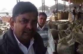मूंग की खरीद सवा अरब पहुंची, लेकिन किसानों को फिर भी नहीं मिल रहा लाभ, ये है बड़ी वजह