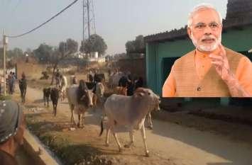 Big News: पीएम की रैली में आवारा पशु लेकर आ रहे ग्रामीण, पुलिस से नोंकझोंक
