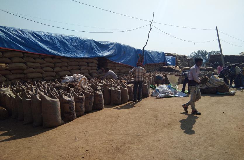 उत्पादन से ज्यादा टोकन कटवाकर किसान खपा रहे ओडिशा का धान